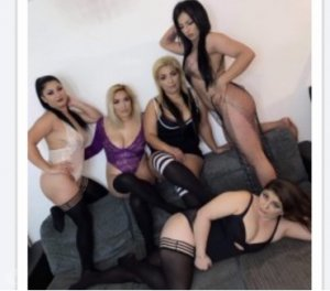 Klervy bdsm escorts in North Olmsted, OH